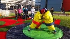 ComMA: Bubble Soccer and Sumo Wrestling